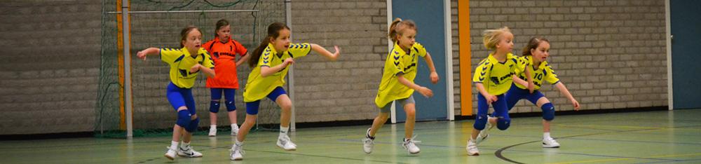 Borhave Mini\'s actief in Hengevelde